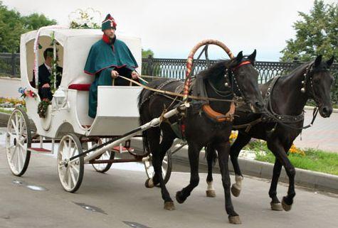 Кучер, лошадь, телега и пассажир